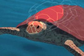 THE RED TURTLE: A Quietly Profound Animation