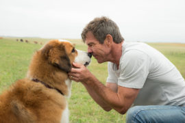 A DOG'S PURPOSE: A Feeble Bark Into The Void