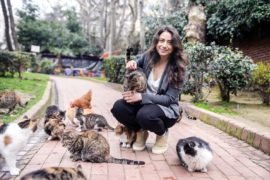 Interview With KEDI Director Ceyda Torun