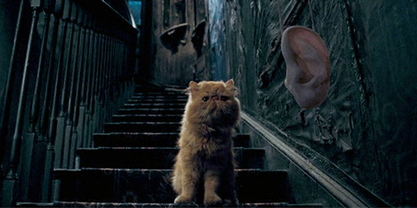 Fantasy Science Pt. 16: Extendable Ears In HARRY POTTER