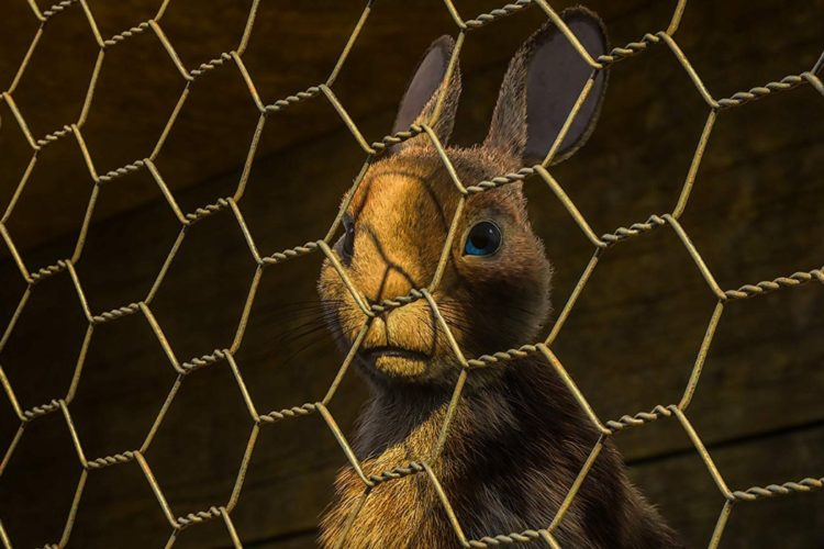 The BBC/Netflix WATERSHIP DOWN Miniseries: The Greatest Rabbit Story