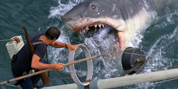 Sharks In Cinema & Environmental Anxieties: From JAWS To THE